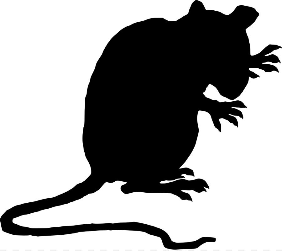 900x800 Brown Rat Black Rat Laboratory Rat Mouse Clip Art