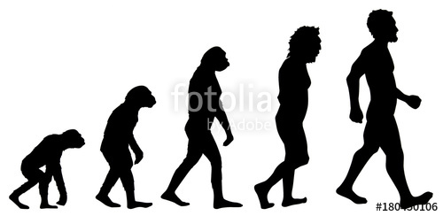 500x244 Human Evolution Graphic Stock Photo And Royalty Free Images
