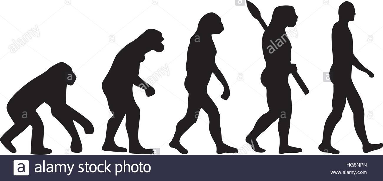 1300x615 Darwin Evolution Of Human Stock Vector Art Amp Illustration, Vector