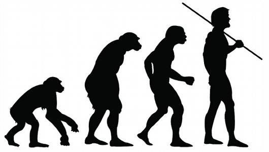 530x300 Projecting Human Evolution 5 Traits We Might Possess In