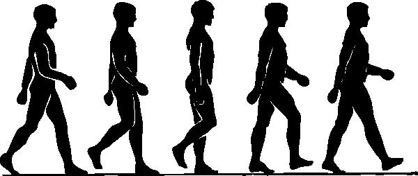 600x254 Silhouette Clip Art