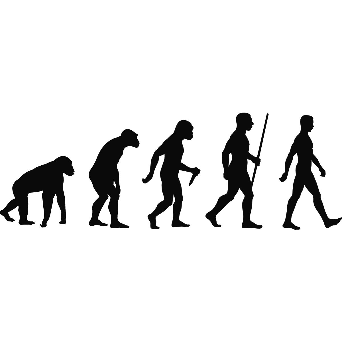 1200x1200 Evolution Of Man Sihouette Wall Art Stickers Wall Decal Transfers