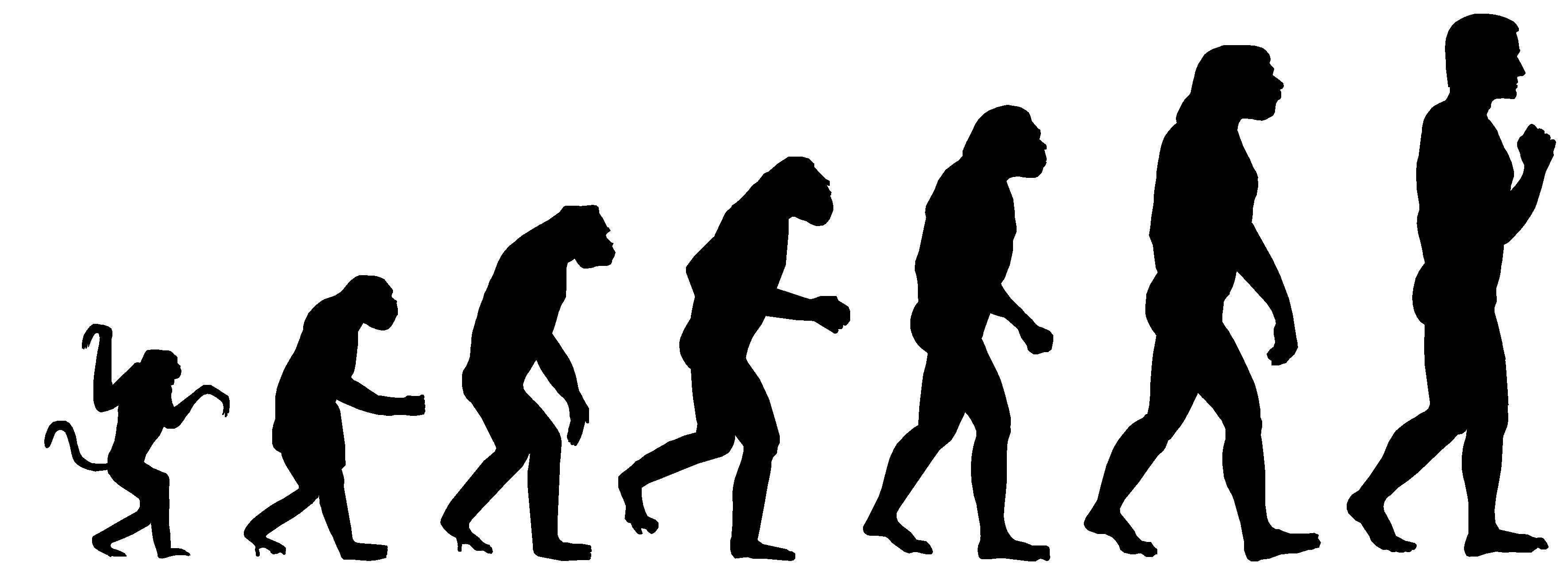 3543x1311 Evolution And A Case For Faith