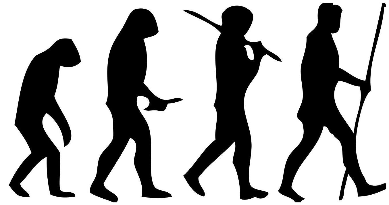 1354x713 Filehuman Evolution Scheme (2).jpg