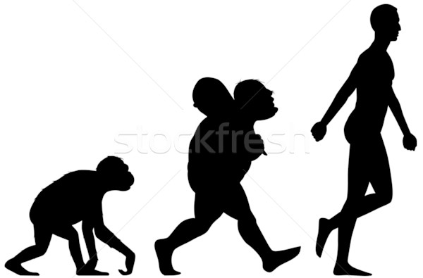 600x395 Human Evolution Silhouette Vector Illustration Carbouval