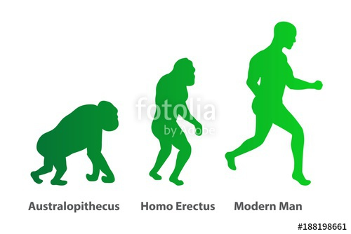 500x334 Illustration Of Human Evolution Process. 3 Stages. Darwin's Theory