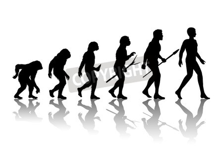 450x300 Vector Of Man Evolution. Silhouette