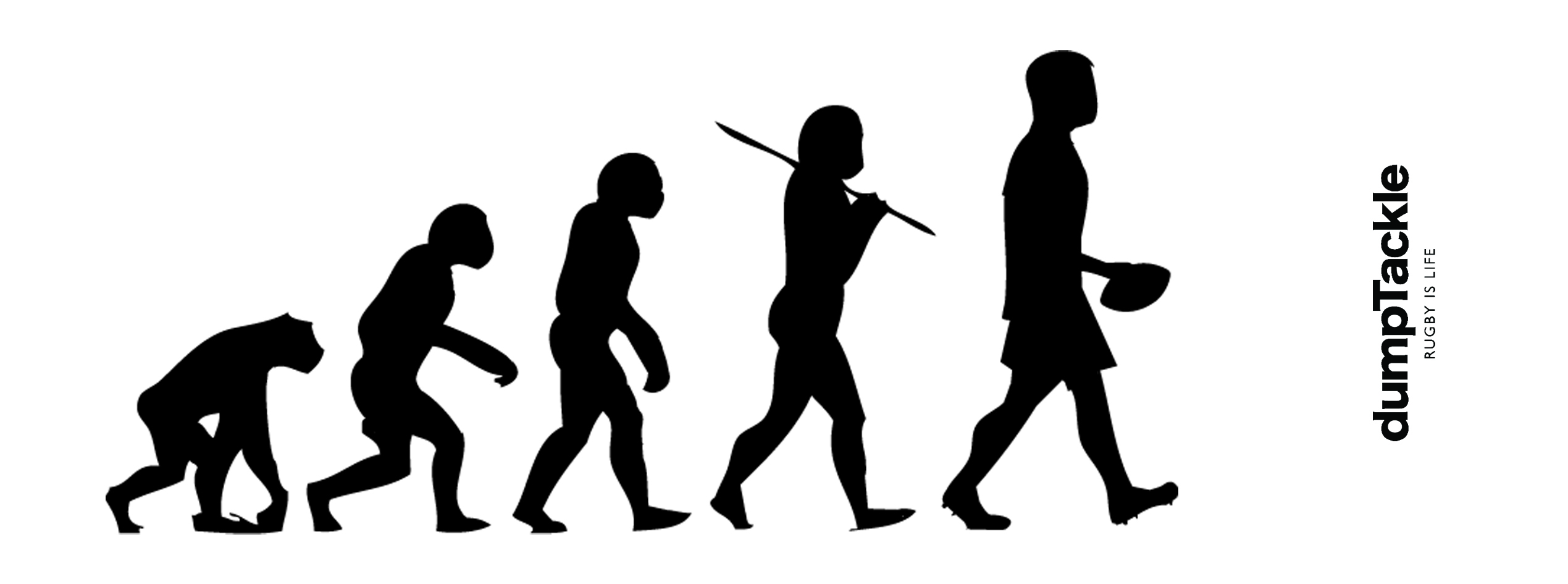 2539x945 Evolution Of Man