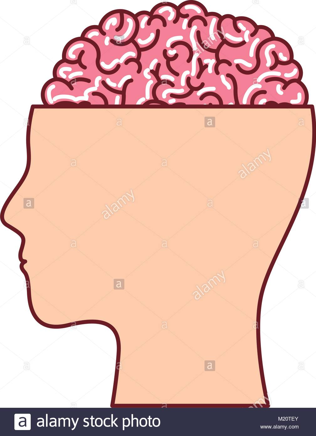 1009x1390 Human Face Silhouette With Brain Exposed In Colorful Silhouette