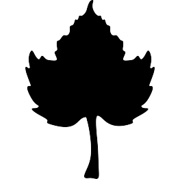 263x262 Pumpkin Leaf Silhouette Woodbuning Silhouettes