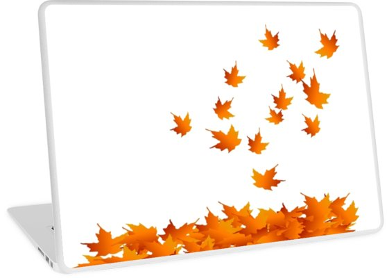 558x400 Autumn Leaves, Maple Leaf, Leaf Silhouette, Nature, Fall, Orange