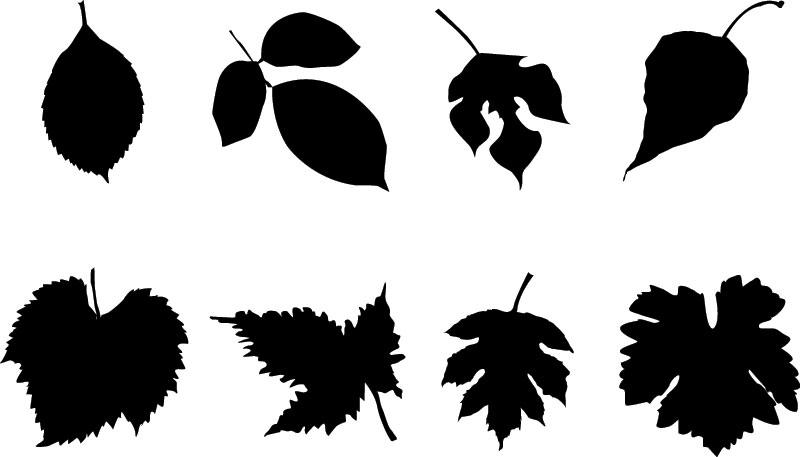 800x457 Autumn Leaves Silhouette Set In Black