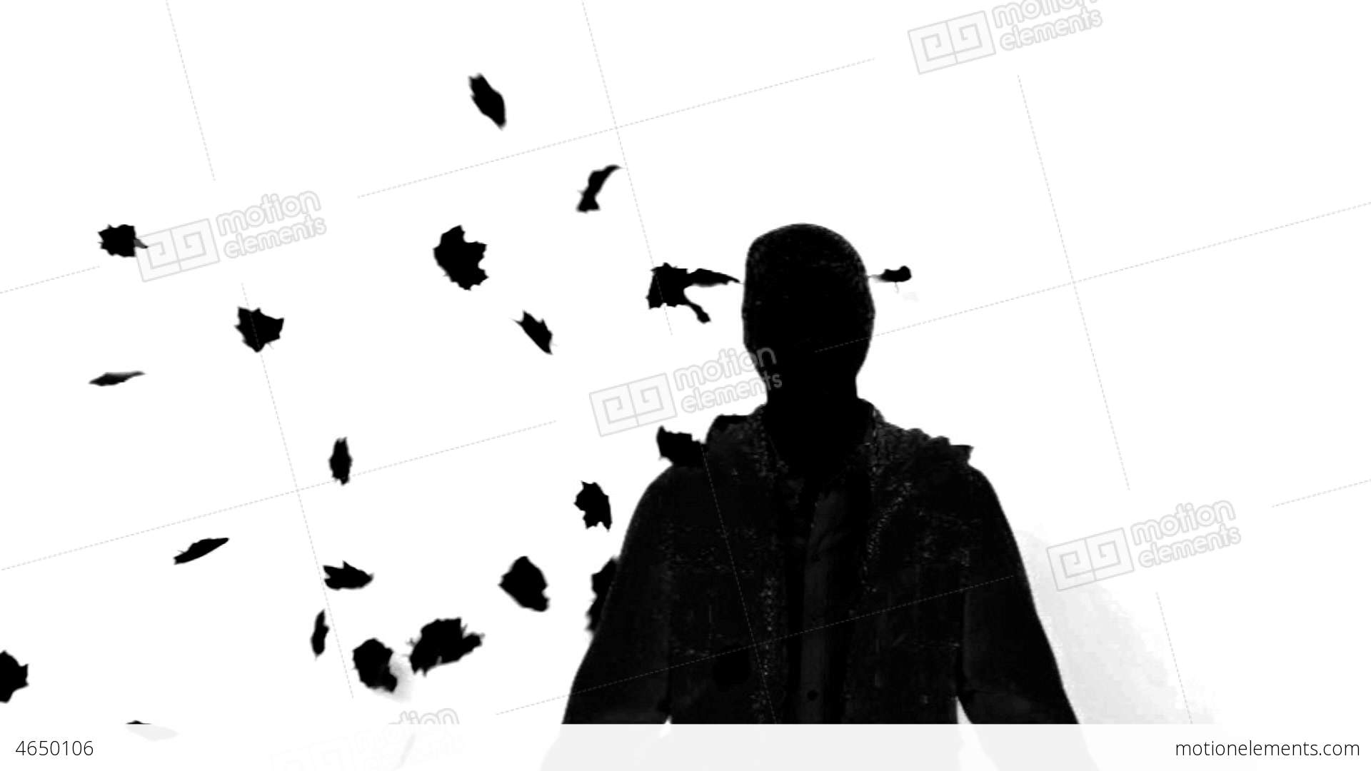 1920x1080 Silhouette Of A Man Under Falling Leaves On White Stock Video