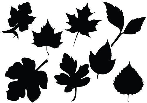 500x350 Fall Foliage Silhouette Vectors Maple, Oak Leavessilhouette Clip