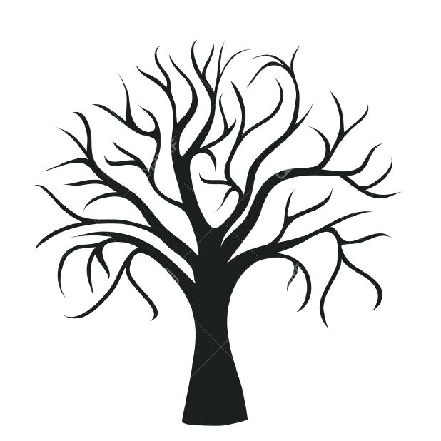 618x618 Outline Trees With Generic Tree Outlines Mainly For Background Use