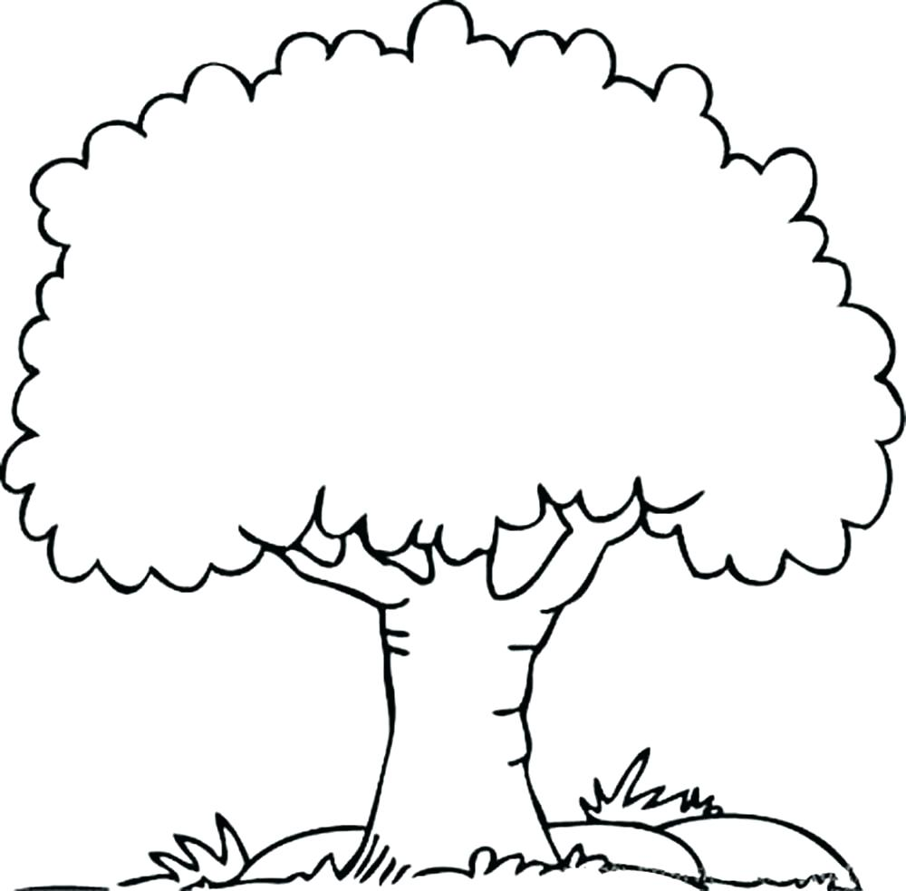 1000x983 Coloring Page ~ Fall Tree Coloring Page Bare Silhouette With Roots