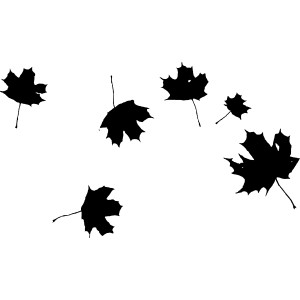 300x300 Black And White Silhouette Leaf