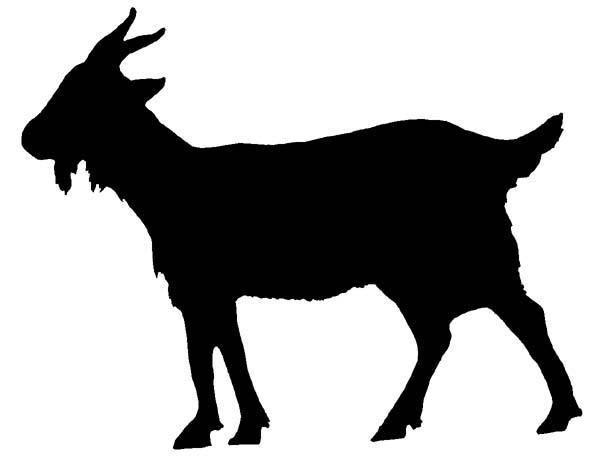 600x462 Goats Head Clipart Silhouette