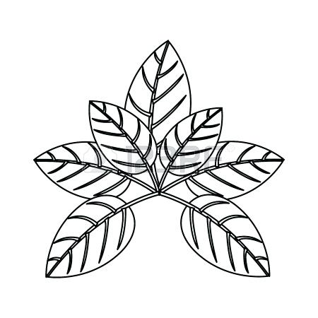 450x450 Outline Tree With Leaves And Trunk Vector Illustration Royalty