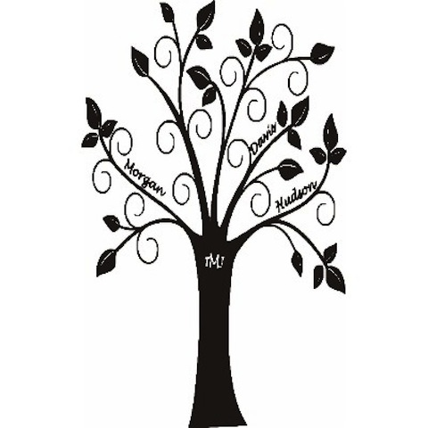 480x480 White Family Tree