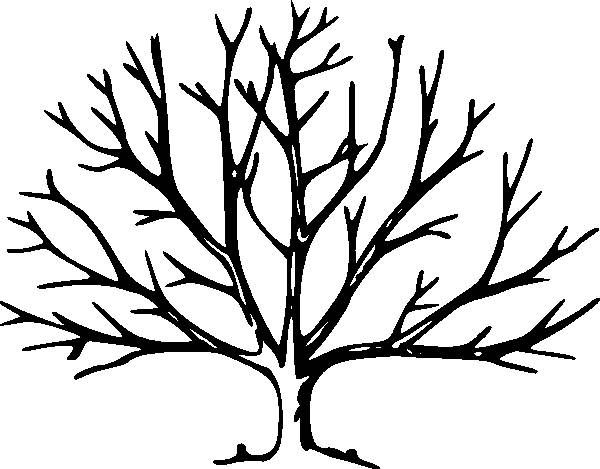 600x469 Drawing A Tree Without Leaves Kids Drawing Coloring Page Craft