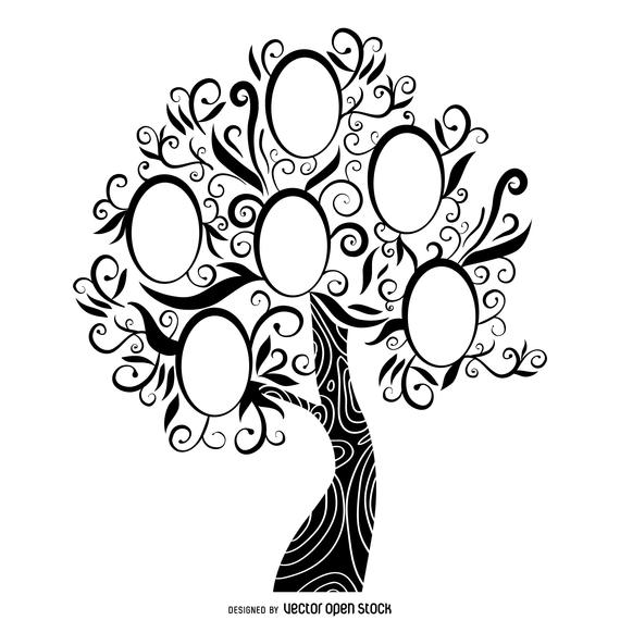 570x570 Black And White Family Tree