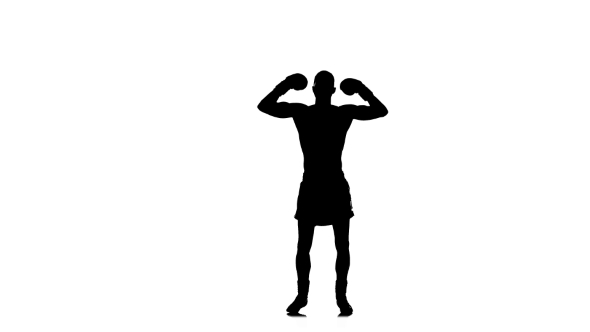 590x332 Boxer Winner Champion Welcomes Its Fans. Black Silhouette By