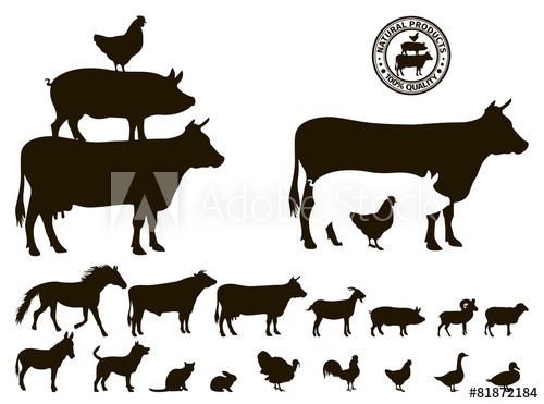 500x371 Vector Farm Animals Silhouettes Isolated On White