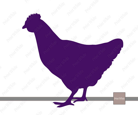 570x475 Farm Animals Clipart, Farm Animal Svg, Animal Svg, Animal Clipart