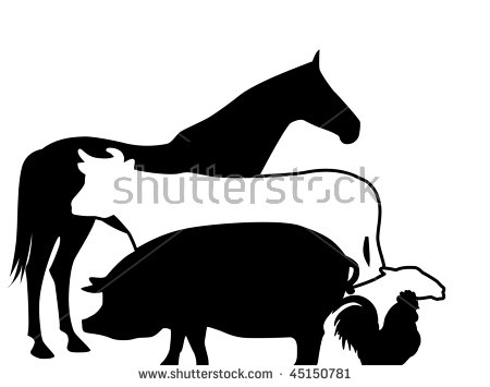 450x355 Farm Animals With Babies Royalty Free Cliparts, Vectors, And Stock