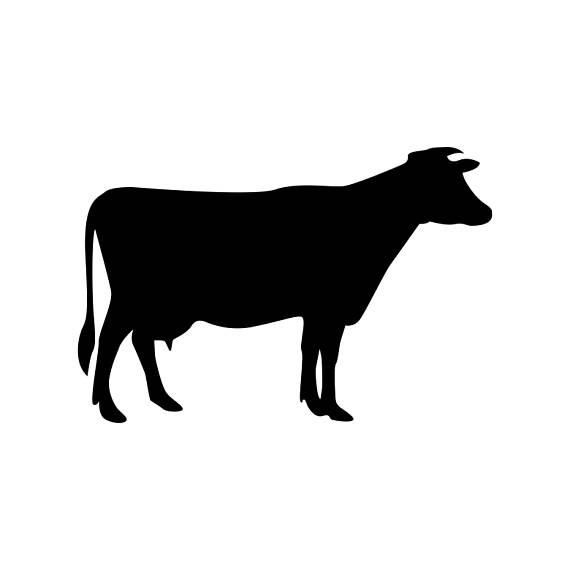 570x570 Cow Farm Animals Graphics Svg Dxf Eps Png Cdr Ai Pdf Vector Art