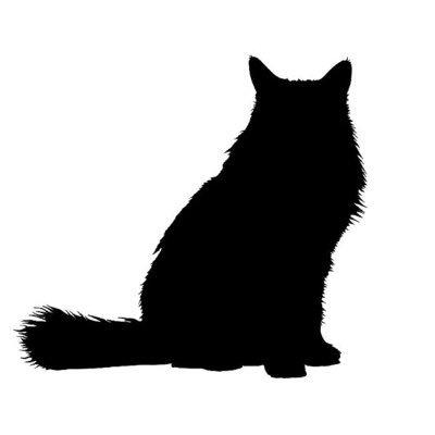 400x400 Fat Cat Leads (@fatcatleads) Twitter