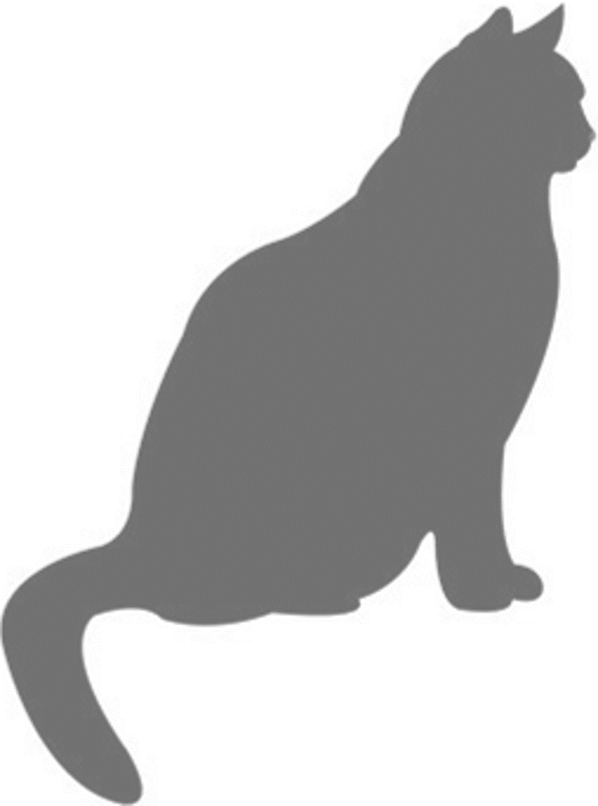 859x1158 Primary Feline Cells Cat Cell Applications