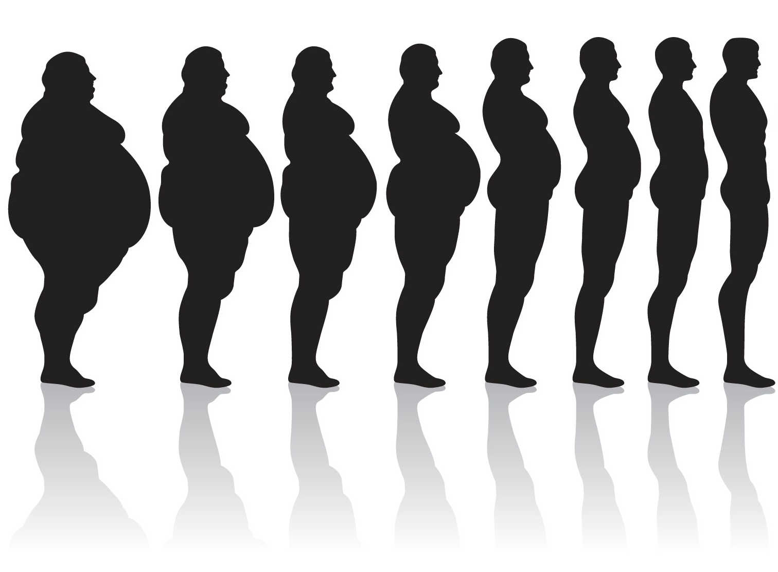 1512x1111 List Of Synonyms And Antonyms Of The Word Obese Silhouette