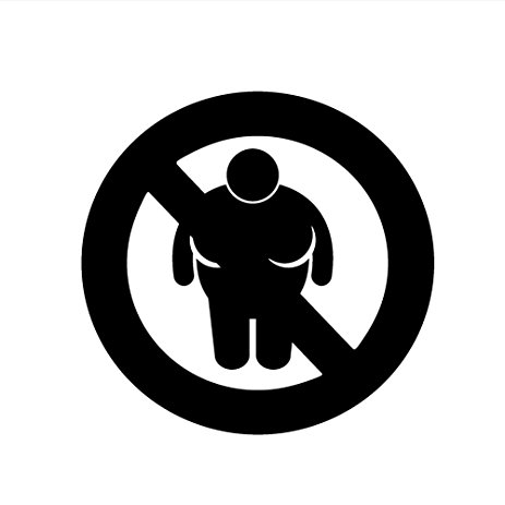 463x463 No Fat People Allowed Funny 6 Vinyl Sticker Car Decal
