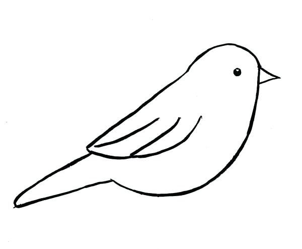 600x494 Birds Outline Pictures And Birds Outline Pictures Bird Outline