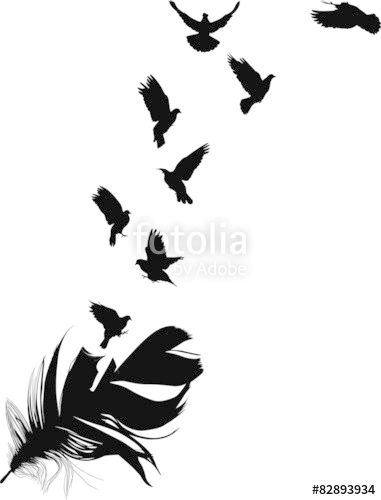 381x500 Doves Flying From Feather Silhouette Isolated On White Stock