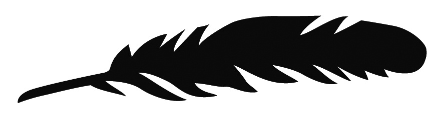 891x245 Feather,silhouette By Ruth Waterhouse