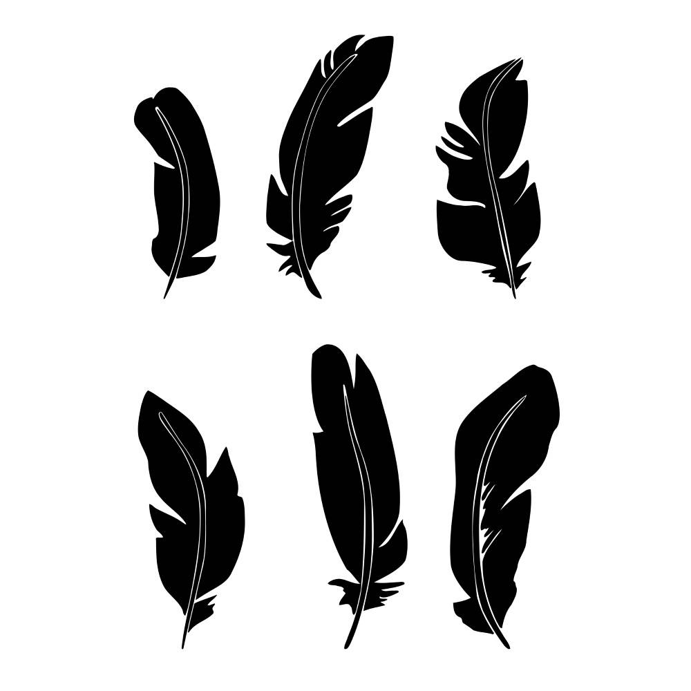 1000x1000 Hand Drawn Feather Silhouettes. Black And White Feather Clip