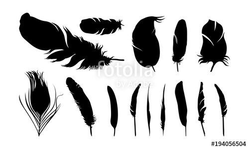 500x300 Set Of Various Of Feather Silhouette Vector Illustration Stock
