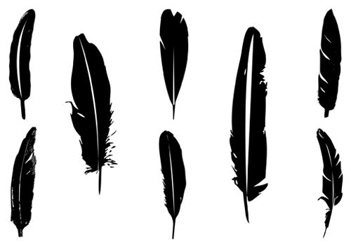 500x350 Feather Silhouette Vector Download