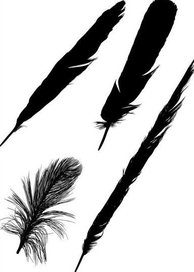384x539 Feather Silhouette Vector Free