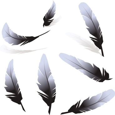 368x368 Feather Silhouette Free Vector Download (5,677 Free Vector)