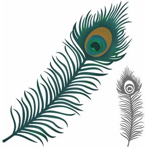 300x300 Silhouette Design Store Beautiful Peacock Feather Allison
