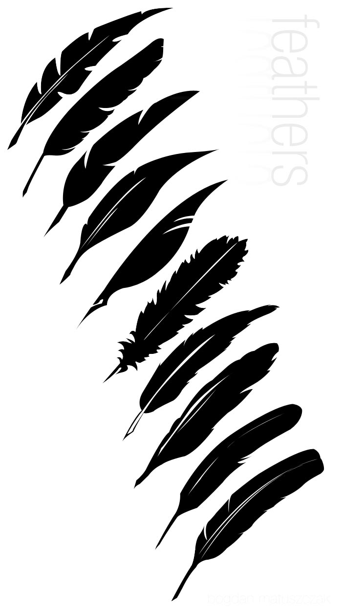 700x1250 Feather Graphic Logo Vector Feathers