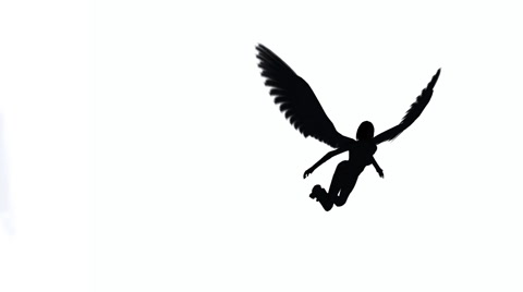 480x268 Female Angel Silhouette Flying Across A White Background ~ Video