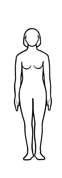 210x599 Gallery Outline Of Human Body Female,