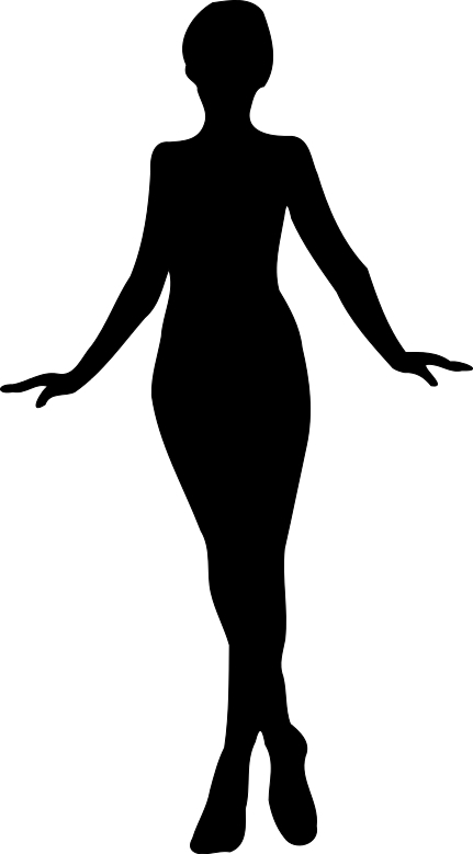 431x779 Graceful Girl Woman Silhouette Stencil Decoration