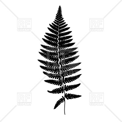 400x400 Fern Leaf Black Silhouette Royalty Free Vector Clip Art Image