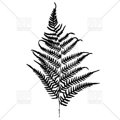 400x400 Fern Silhouette Royalty Free Vector Clip Art Image